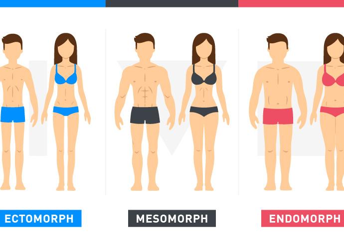 Which Body Type Are You & How Should You Be Training? 1